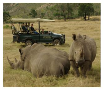 Safari African Tours Image